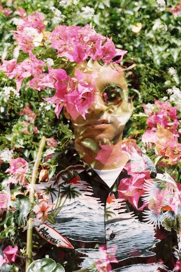 http://www.amandinepaulandre.fr/files/gimgs/23_f1000010.jpg